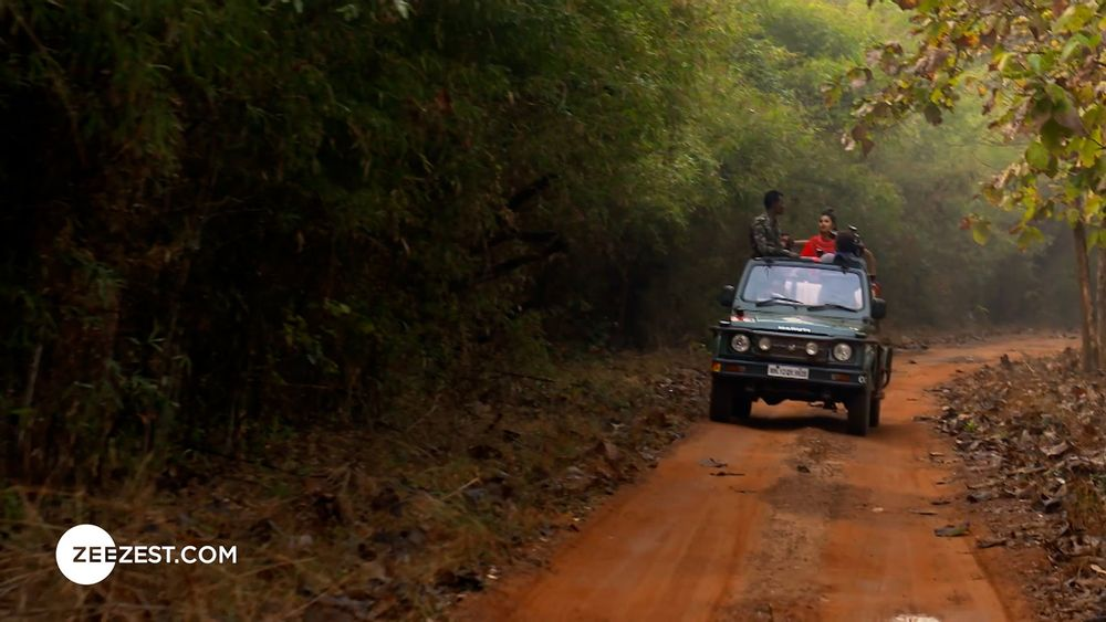 A Visit to Tadoba National Park